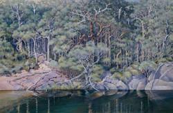 Tranquility Fernhook Falls Walpole