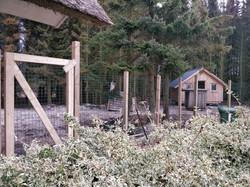 Vores lille private hundeskov