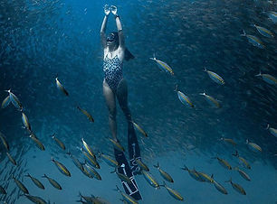 freediving-about.jpg
