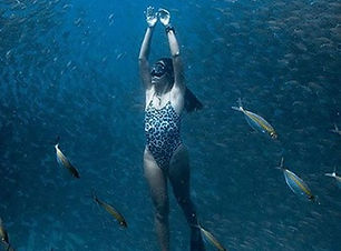 freediving-about_edited.jpg