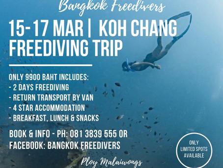 Koh Chang Freediving Trip