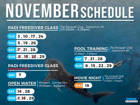 November & December 2020 Schedule