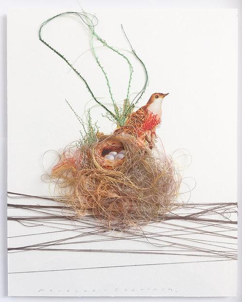 Bird Nest II