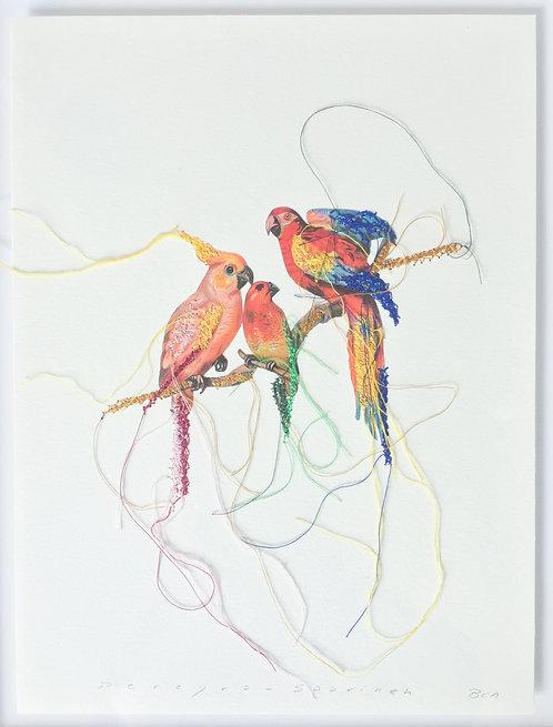 Three parrots II