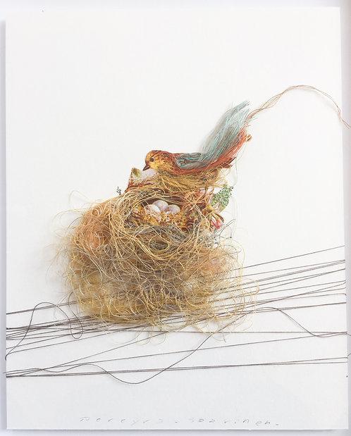 Bird Nest III