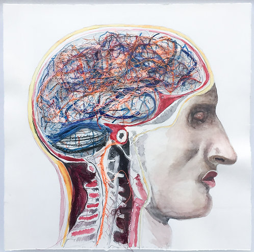 Brain Nervous
