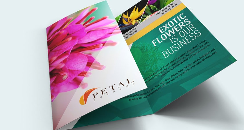 Custom brochures by Captivating Images