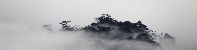 Serranía entre la niebla