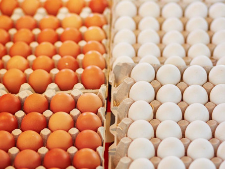 The price of eggs should give small islands something to think about