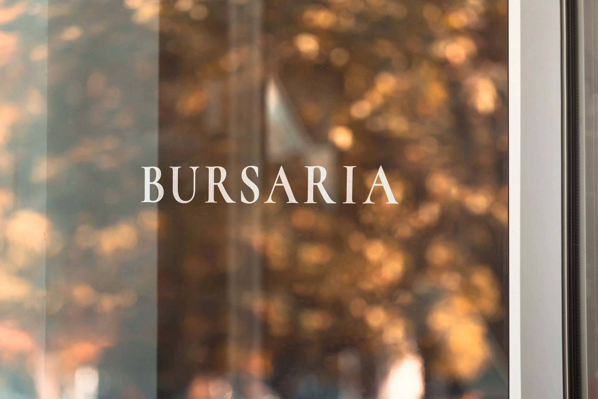 Bursaria_Logo.jpg