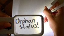 Orphan Drug Designation for Treatment of Stargardt's Disease!