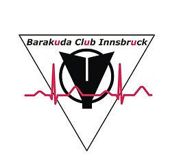 BCI Logo1.jpg