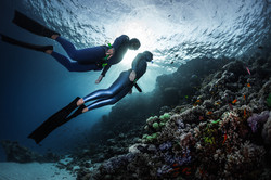 Two freedivers swimming underwater over