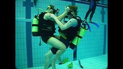 handicap dive