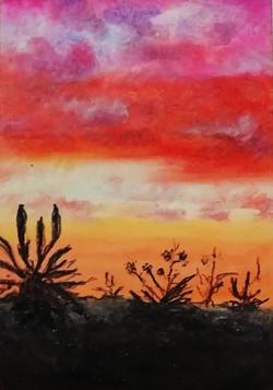 Aloe Sunset (SOLD)