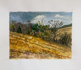 die winterreise, watercolor #1