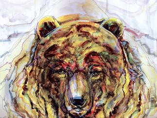 «Мечта медведя». Международный художественный фестиваль эко плаката