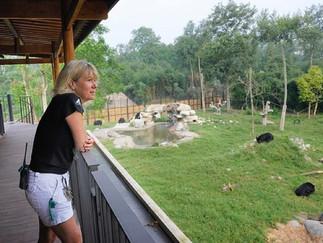 Animals Asia и лунные медведи