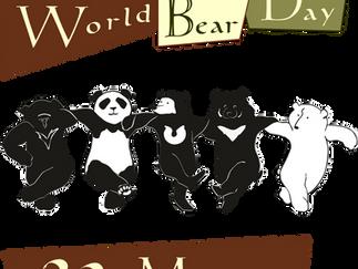 О Международном дне медведя (in russian)