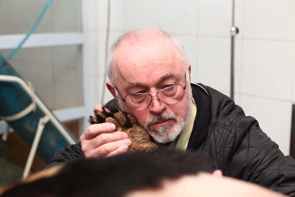 Animals Asia ambassador Peter Egan.
