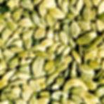 Moliūgų sėklos