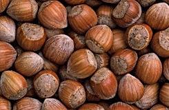 bulk hazelnuts