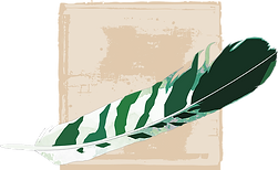 feather-886099_640.png
