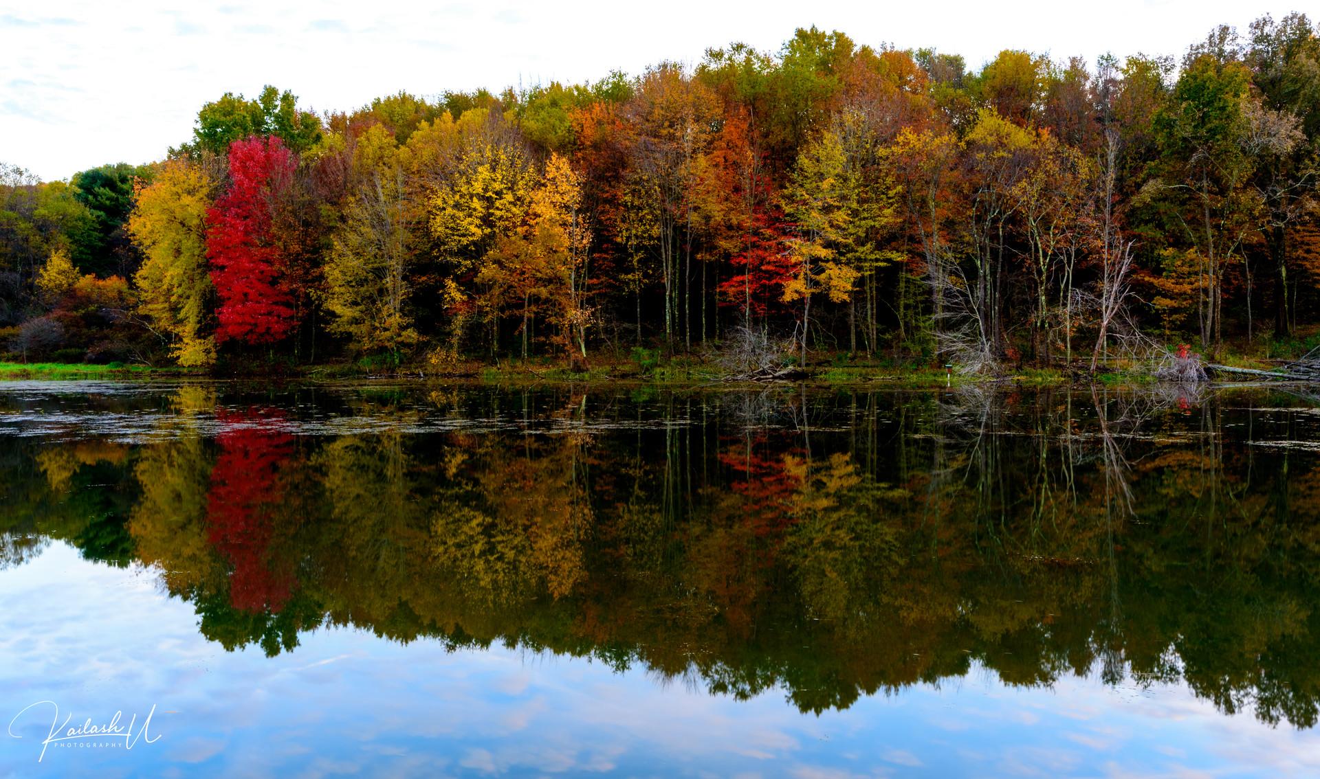 Moriane State Park, PA