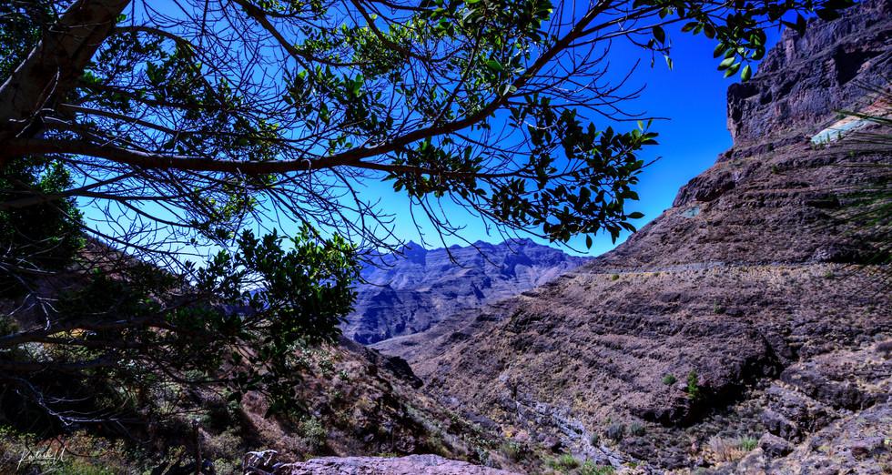 Canyon, Gran Canaria