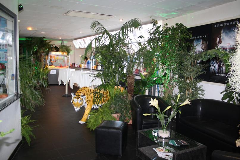 Dschungel Dekoration