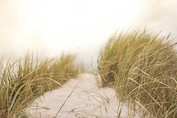 sand-691710_1920.jpg