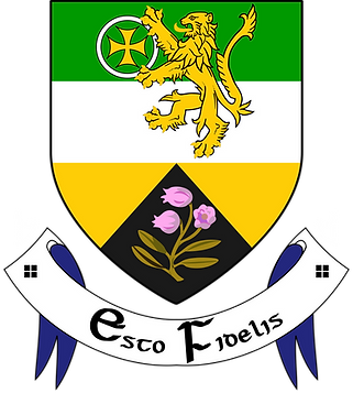 2000px-Offaly_crest.svg.png