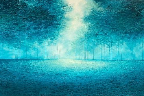 A FOREST ETERNAL