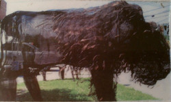 wire mesh art american bison