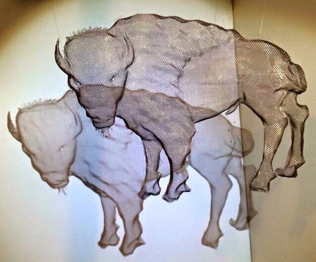 Wire Mesh Sculpture Animal Studies