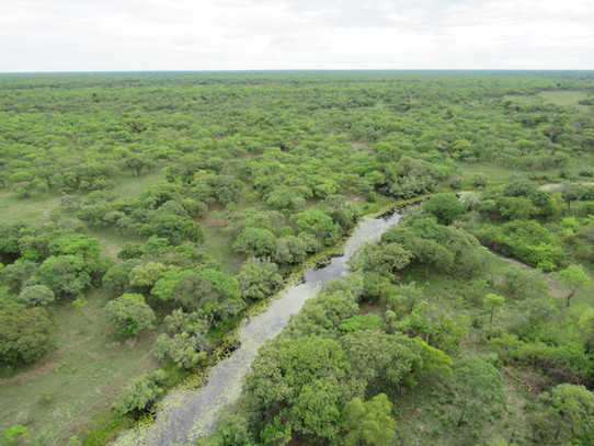 Aerial view of the Lushimba River