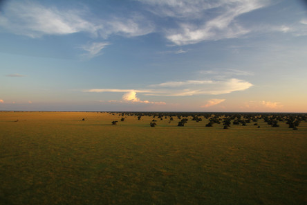 The Busanga Plains