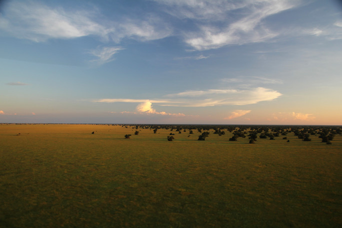 The Busanga Plains