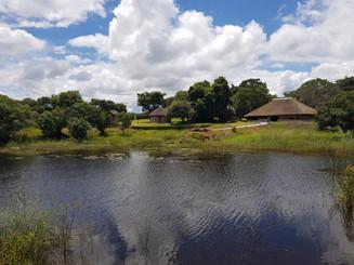 View of Lushimba Lodge