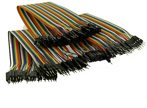 40 Pin Rainbow Ribbon breakout cable 20cm