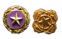 Recognizing Gold Star Fathers