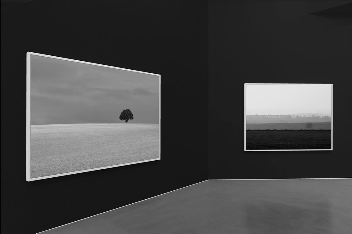 Gratitude - Gallery #01.jpg