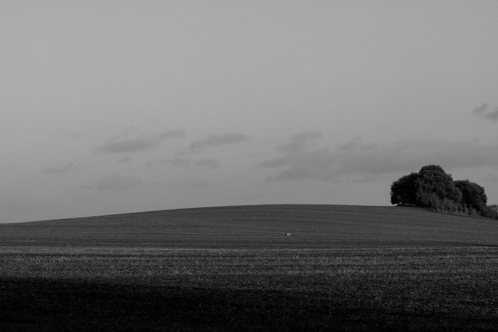 England Countryside #37
