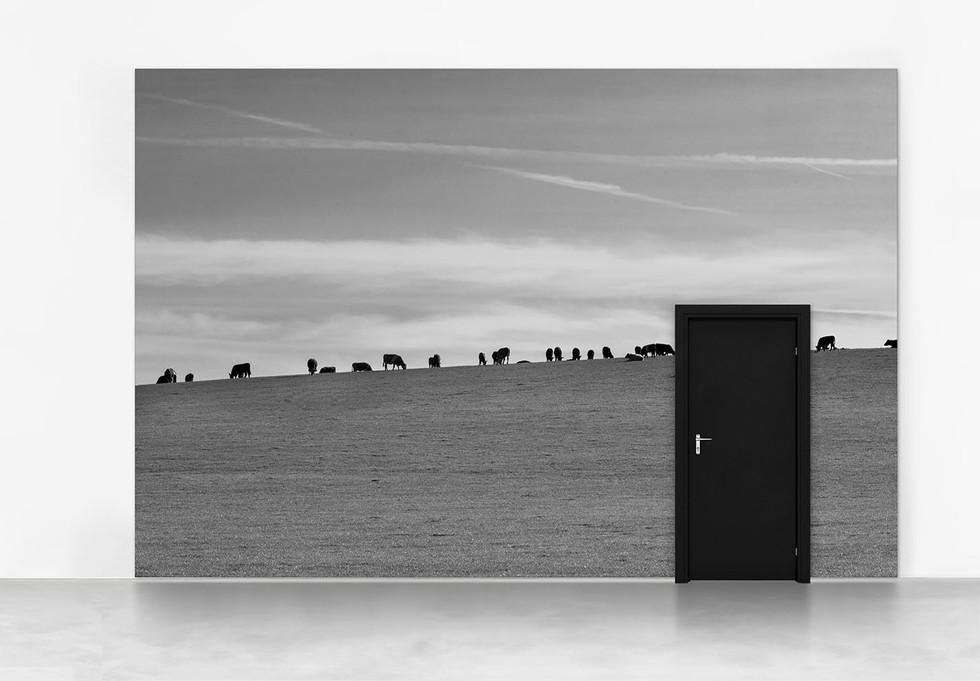 Inner Door #02A