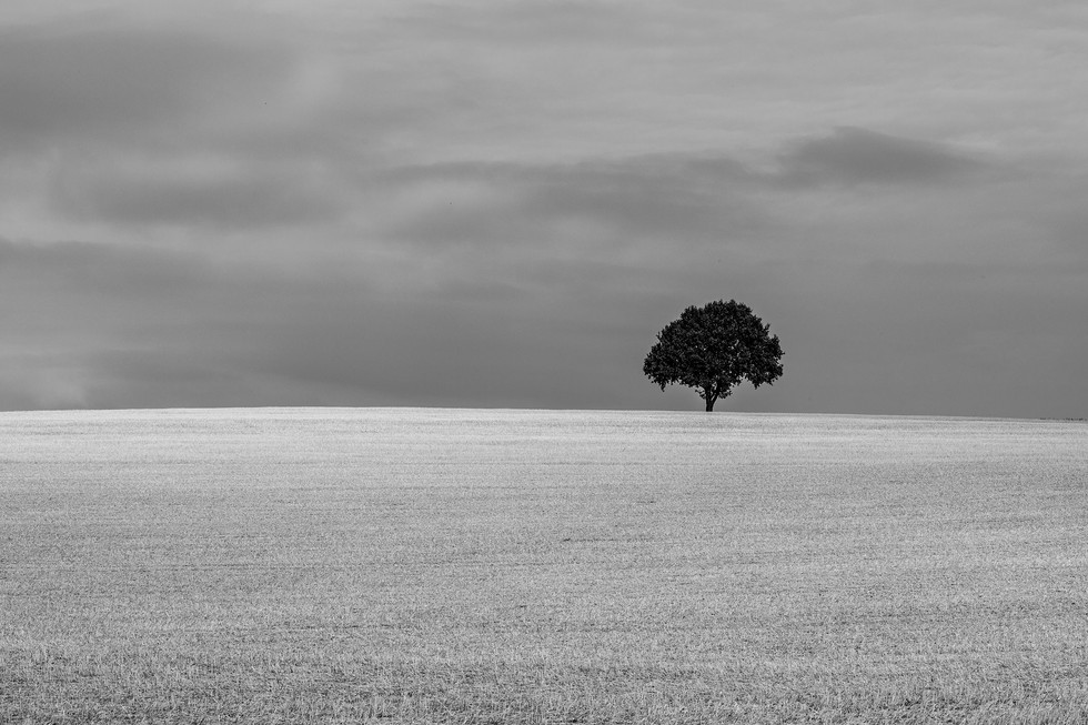 England Countryside #01
