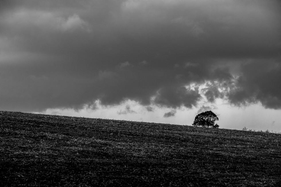England Countryside #06