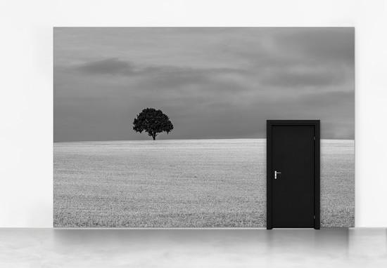 Inner Door #03A