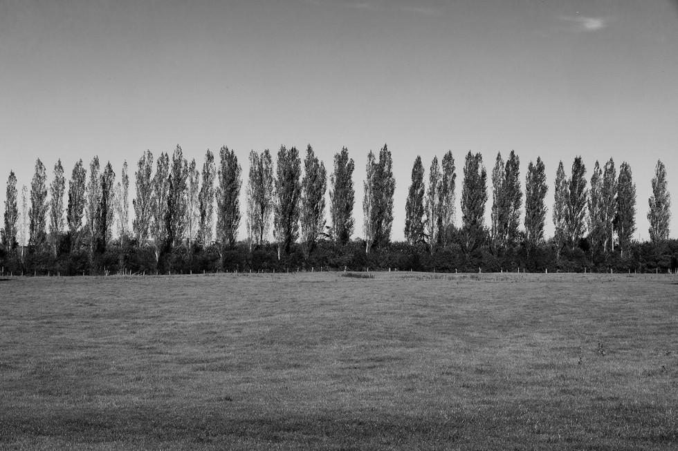 England Countryside #22