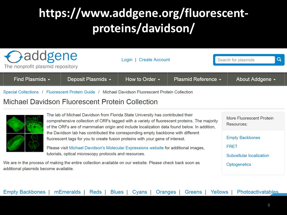Addgene Davidson Collection