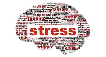 Aivojen ääriviivat sanapilvenä stressiin liittyvin sanoin